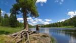 (Bild: ©Ralf Blechschmidt - stock.adobe.com)