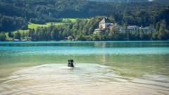 Fuschlsee, Salzkammergut (Bild: ©David Pastyka - stock.adobe.com)