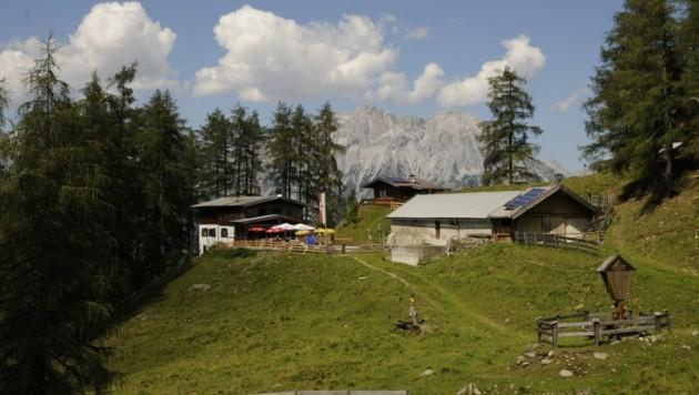 Der Hocheder (2796 m) und die Hohe Munde (hier abgebildet) prägen das Bild bei der Pfaffenhofer Alm.