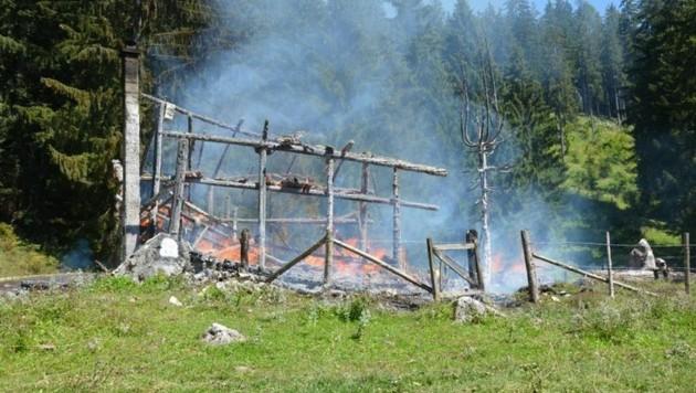 Feuerwehr konnte ein Übergreifen der Flammen auf den Wald verhindern (Bild: Feuerwehr Abtenau)