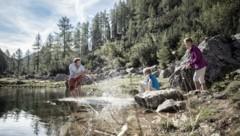 Auf der Wurzeralm gibt es auch familienfreundliche Wanderwege (Bild: Robert Josipovic)