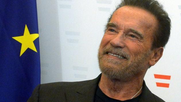 Arnold Schwarzenegger (Bild: APA/HERBERT PFARRHOFER)