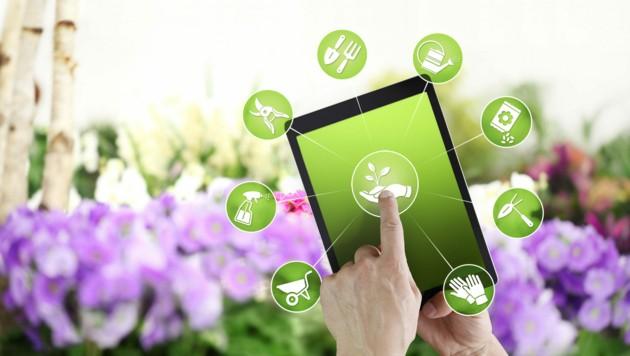 Einkauf im Onlineshop eines Bau- und Gartenmarktes (Symbolbild). (Bild: ©visivasnc - stock.adobe.com)