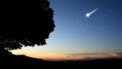 Bis zu 100 Sternschnuppen pro Stunde gibt es zu bewundern. (Bild: stock.adobe.com)