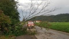 (Bild: Freiwillige Feuerwehr St. Donat)