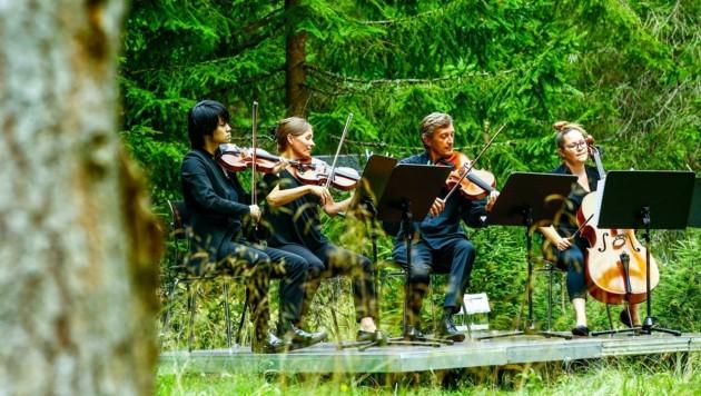 Im Kötschachtal spielten Jiachen, Tatiana, Maxim, Timea und Emmanuelle für 40 musikbegeisterte Naturliebhaber ein Waldklassikkonzert. (Bild: Gerhard Schiel)
