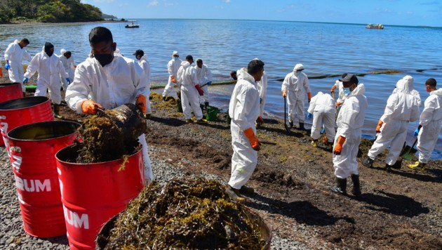 Freiwillige versuchen, Verschmutzungen vom Strand zu entfernen. (Bild: AFP)
