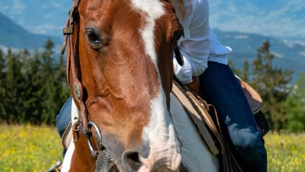 Im (Früh)-Sommer 2020 blieb für Katharina Liensberger mehr Zeit für andere Sportarten und Hobbies. So wagte sich die 23-Jährige auch erstmals auf den Rücken eines Pferdes.