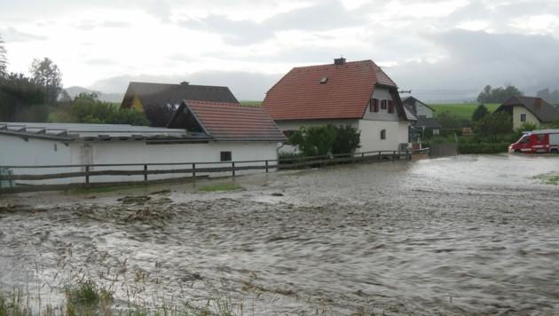 Überschwemmte Wiesen in Mariahof (Bild: BFV Mu/Horn)