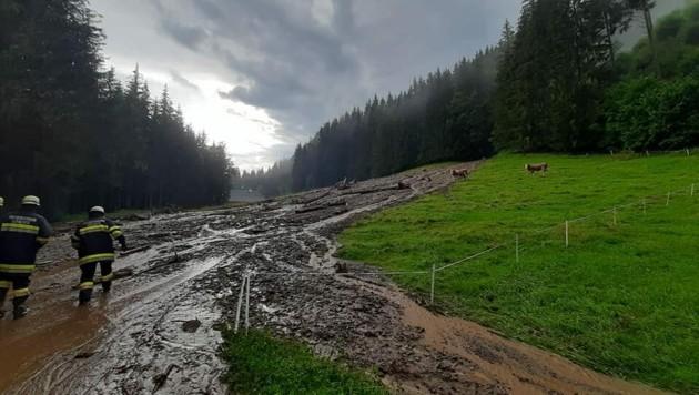 Straßen und Weiden wurden überflutet. (Bild: FF Grades)