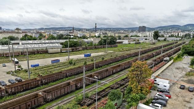 Stadtentwicklungsgebiet am Nordwestbahnhofgelände (Bild: APA/HERBERT NEUBAUER)