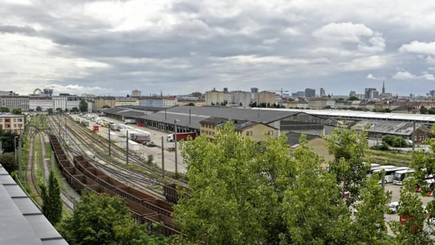 Nordwestbahnhofareal (Bild: APA/HERBERT NEUBAUER)