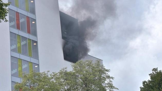 Verletzte gab es nicht. Die Zerstörungen beschränkten sich auf die Wohnung mit der Loggia. (Bild: APA/STADT WIEN | FEUERWEHR)