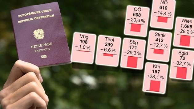 (Bild: APA, elmar gubisch/stock.adobe.com, Krone KREATIV)