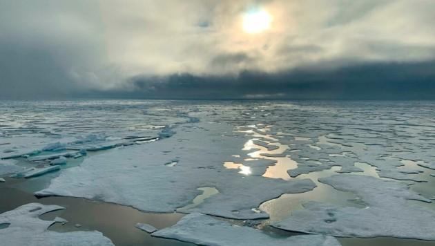 """""""Es ist erschreckend zu sehen, wie dünn das Meereis ist und wie schnell es schmilzt"""", so Expeditionsleiter Markus Rex. (Bild: AP)"""