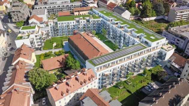 So soll das Riesen-Wohnbauprojekt nach Bauende aussehen (Bild: Immola)