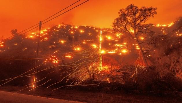 In Kalifornien wüten derzeit bei großer Hitze Hunderte Feuer.