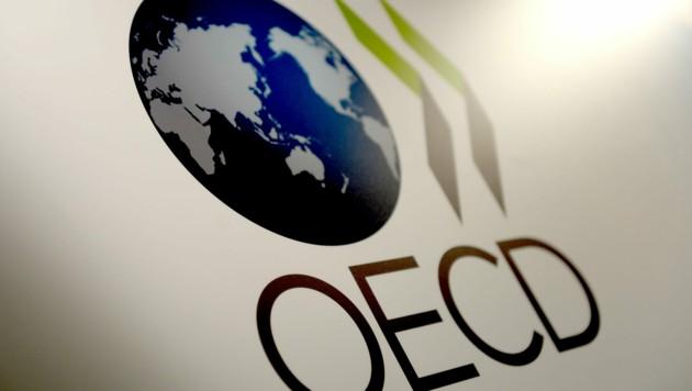 Die OECD besteht aus 37 Mitgliedsstaaten, die sich der Demokratie und Marktwirtschaft verpflichtet fühlen - ihre Mitgliedsländer weisen vor allem ein hohes Pro-Kopf-Einkommen auf.