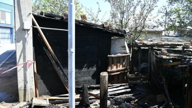 Der Hühnerstall brannte ab (Bild: Huber Patrick)