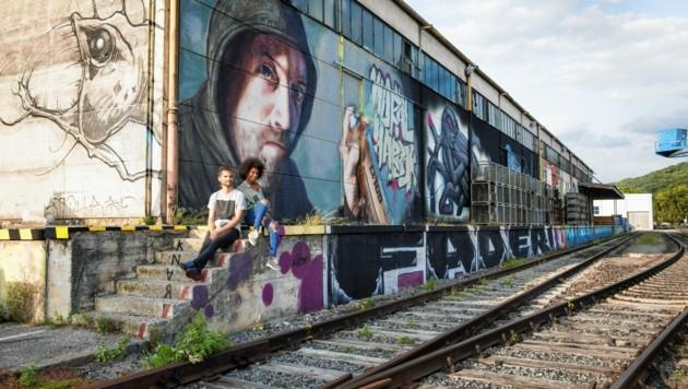 Mit Mural Harbour ist im Linzer Hafen Europas größte Graffiti- und Muralismo-Galerie entstanden. (Bild: Linz Tourismus, Robert Josipovic)