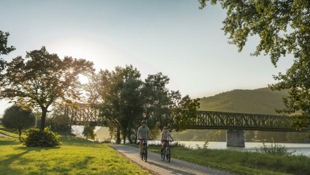 Idyllisch, aber baufällig? Die Lebensdauer der Donaubrücke wird aktuell gerade begutachtet.