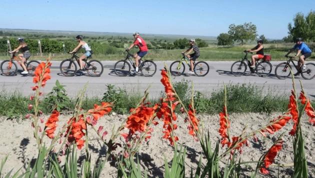 Radfahren liegt im Trend. (Bild: Judt Reinhard)
