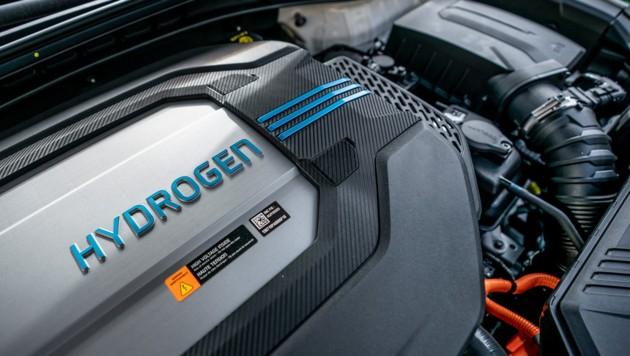 Hyundai Nexo (Bild: APA/DPA/MICHAEL KAPPELER)