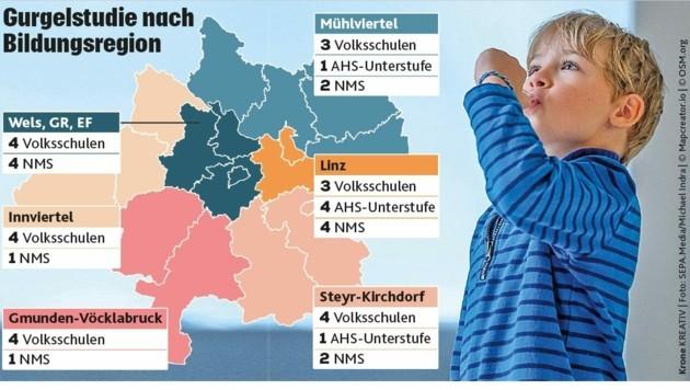 In diesen Regionen wird die Gurgelstudie durchgeführt. (Bild: Krone Kreativ)