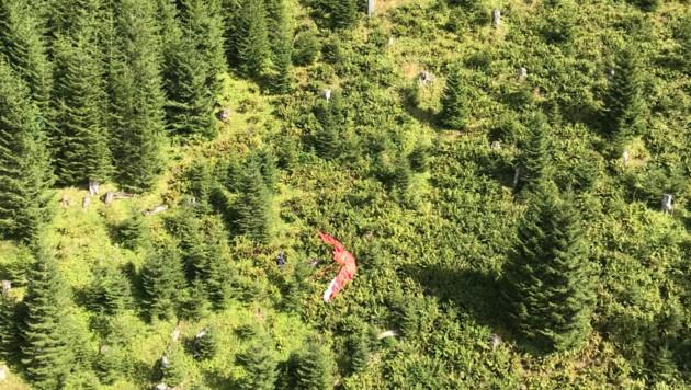 Das Paragleiter-Pilot stürzte in einen Jungwald ab. (Bild: zoom.tirol)
