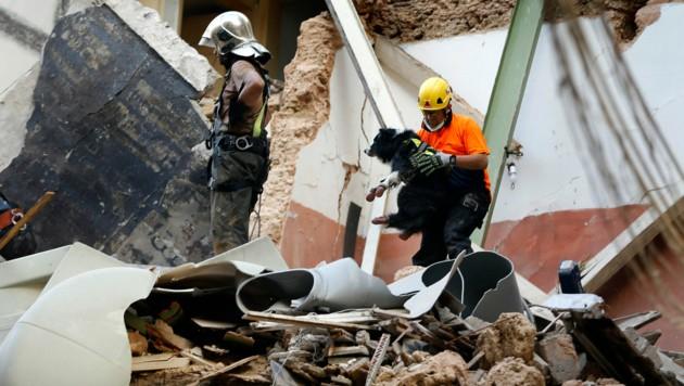 Ein Mitglied des chilenischen Rettungsteams mit seinem Spürhund (Bild: AP)