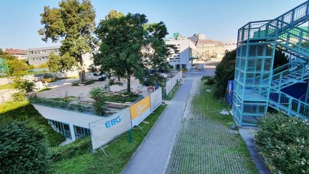 Die Landesfrauen- und -kinderklinik soll einen neuen Kinderbettentrakt bekommen, der auf dem Campus III-Areal zwischen den Bauten A und C errichtet werden soll. Auch die Betriebsküche kommt neu. (Bild: Einöder Horst)