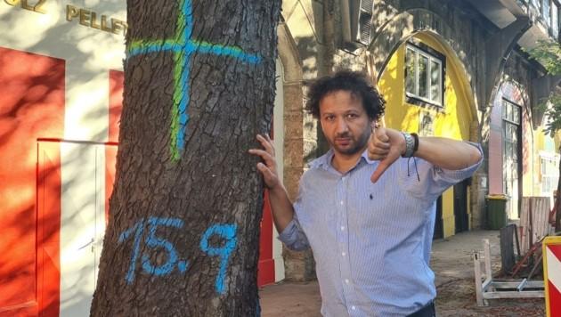 GR Onay mit einem der Bäume, die gefällt werden sollen. (Bild: Zvg)
