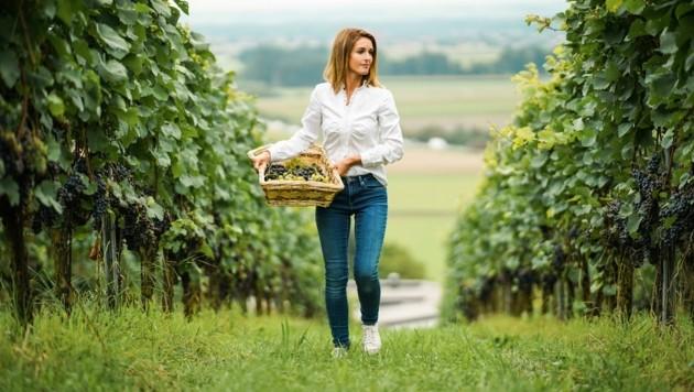 Winzer Leo Gmeiner führt mit seiner Frau Verena den Landwirtschafts- und Winzer-Betrieb in Perg. (Bild: Wenzel Markus)
