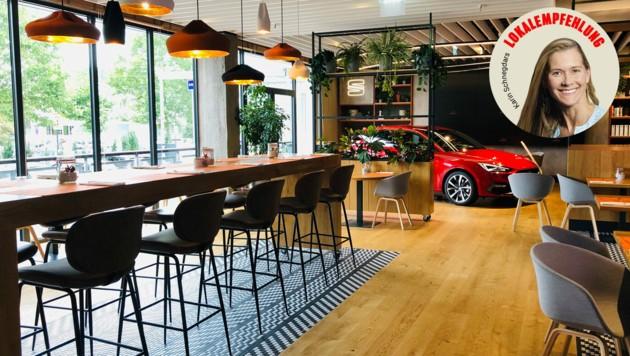 Tapas-Bar im Autosalon mit Amadors großartigen nordspanischen Speisen (Bild: Karin Schnegdar, krone.at-Grafik)