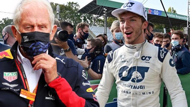 Helmut Marko (li.) und Pierre Gasly (Bild: AFP, GEPA)