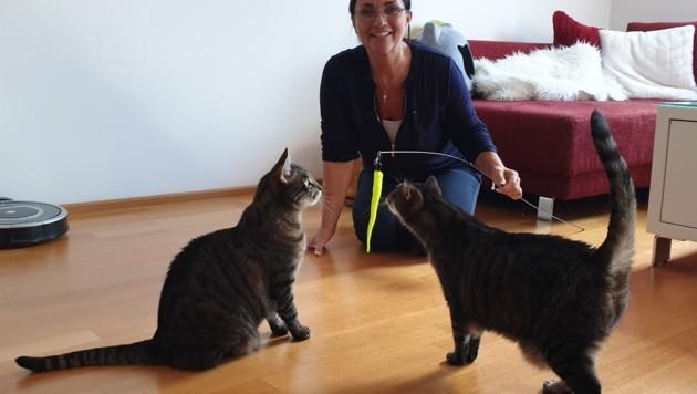 Katzencoach Petra Ott besuchte die Familie in ihrem Zuhause. (Bild: Petra Ott)