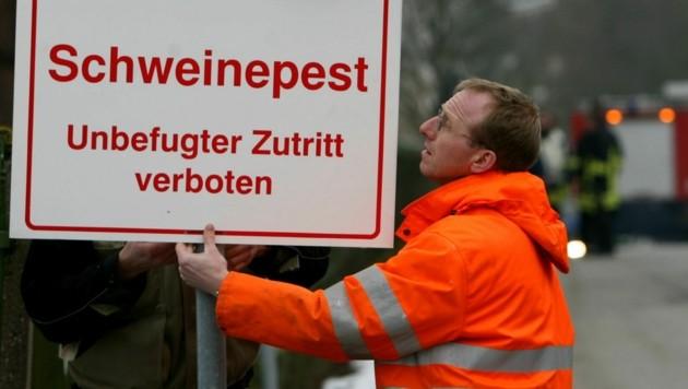 Es ist nicht der erste Schweinepest-Fall in Deutschland, auch vor Jahren wurden schon Warnschilder aufgestellt. (Bild: APA/dpa/dpaweb)