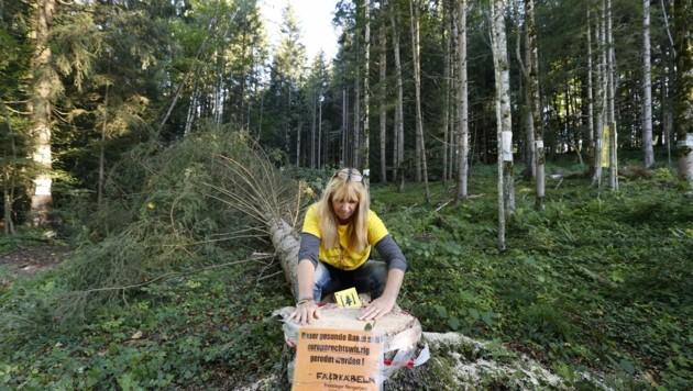ie Projektgegner demonstrieren in Bad Vigaun. Auch Besitzstörungsklagen stoppen sie nicht (Bild: Tschepp Markus)