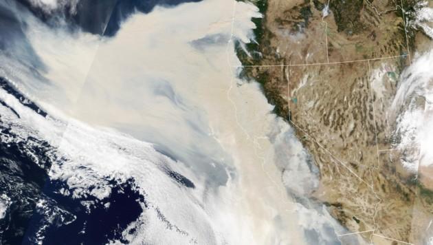 Satellitenaufnahmen der NASA zeigen eine riesige Rauchwand über den betroffenen Gebieten. (Bild: AFP/NASA Earth Observatory)
