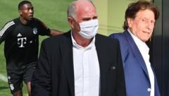 David Alaba, Bayern-Legende Uli Hoeneß und Alaba-Berater Pini Zahavi (Bild: AFP, Krone KREATIV)