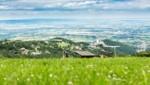 Im Naturpark Rosalia-Kogelberg wird ein modernes Naturparkzentrum errichtet. (Bild: Christian Camus)
