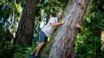 Touristen wie Einheimische freuen sich über die Energie in unseren wunderschönen Wäldern. (Bild: Steiermark Tourismus / ikarus.cc)
