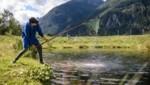 Regionalität war einer der Schwerpunkte. Dazu zählen natürlich auch Fische aus den heimischen Gewässern. Bestes Tiroler Quellwasser – da können die Fische nur gut sein. (Bild: Franz Oss Photography)