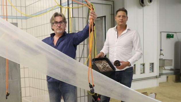 Fred Burgholzer (li.) und Patrick Stimmeder blieben nur leere Pflanzentöpfe zurück. (Bild: Matthias Lauber)