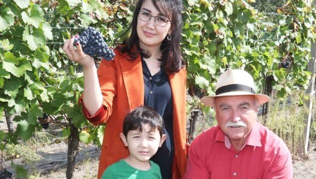 """Khamida Fayzullaev, Ehefrau des Botschafters aus Usbekistan: """"Ich bin zum ersten Mal bei einer Weinlese. Die Trauben schmecken. Vielen Dank, lieber Willi Opitz."""" (Bild: Judt Reinhard)"""