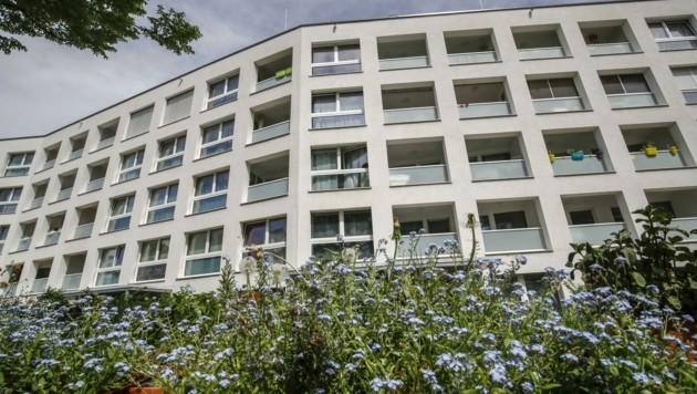 Kleinere Wohnungen werden in Salzburg zunehmend beliebter und sind gefragt wie nie (Bild: Tschepp Markus)