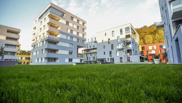 Im Oktober diskutiert die Stadtpolitik über die Vergabe-Vorschläge von Barbara Unterkofler. (Bild: Tschepp Markus)
