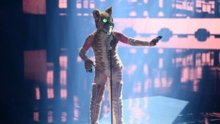 Wer versteckte sich hinter der Maske der Katze? (Bild: PULS 4/Julia Feldhagen)
