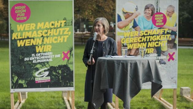 Spitzenkandidatin Birgit Hebein (Grüne) bei der Vorstellung der zweiten Plakatserie für die Wien-Wahl (Bild: APA/KARO PERNEGGER)