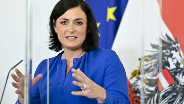 Tourismusministerin Elisabeth Köstinger (ÖVP) (Bild: APA/Herbert Neubauer)